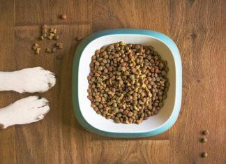 skład karmy dla psów