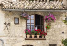 Jakie kwiaty na balkon wybrać